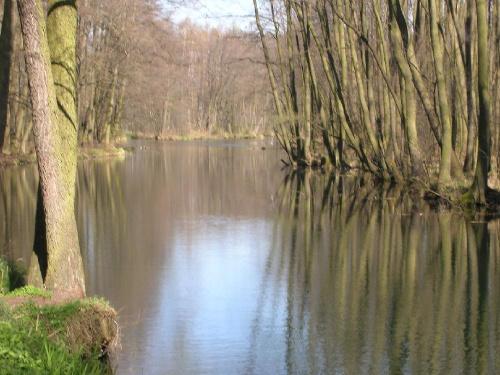 magiczna rzeka