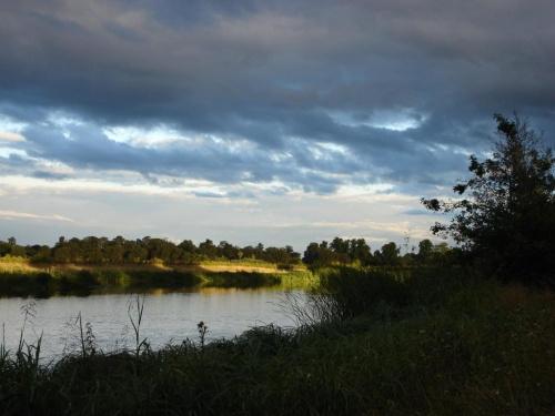 wieczór na rybkach... #rzeka #Slough #Niebo #chmurki #roślinki