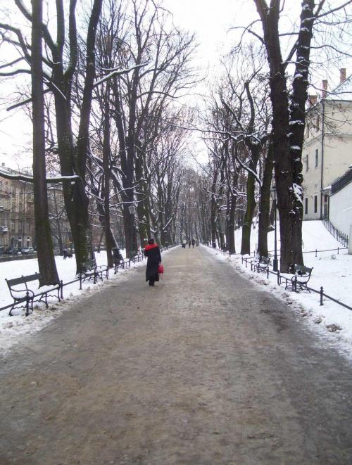 Pejzaż z czerwienią #Kraków #Planty #pejzaż #czerwień