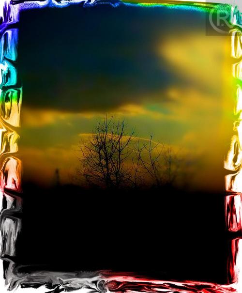 drzewko w trybie Tilt-shift #widok #efekt #Tilt #shift #kolory #wyostrzanie #corel #zdjęcie #fotografia #grafika #efekty #obróbka #zamazywanie #kolor #czarny #biały #ZKolorowym #element #drzewo #drzewko #przyroda #czereśnia