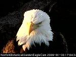 http://images25.fotosik.pl/318/8935f525db0652b7m.jpg
