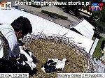http://images25.fotosik.pl/7/de7b8349f3e19e3fm.jpg