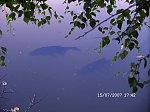 http://images25.fotosik.pl/99/88faa7146edd446bm.jpg